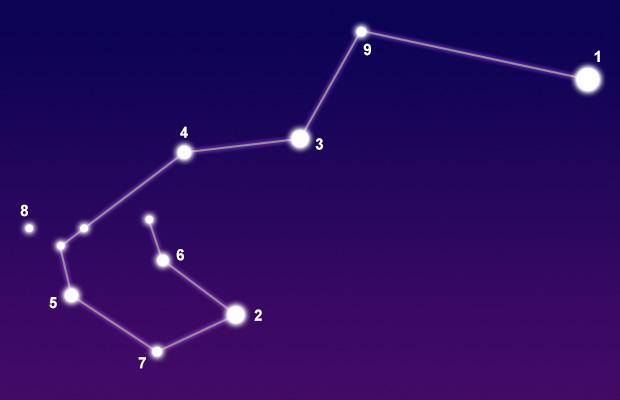 carina constellation