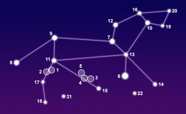 Constellation Leo - The Constellations on Sea and Sky
