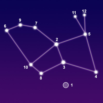 Constellation Lepus - The Constellations on Sea and Sky
