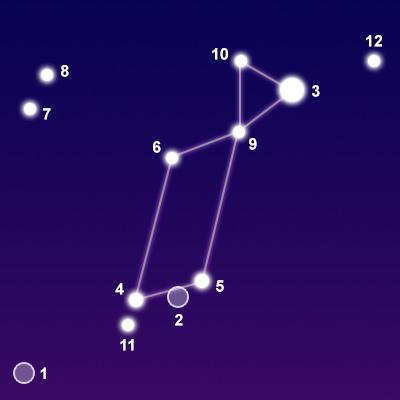 Constellation Lyra on Sea Turtle