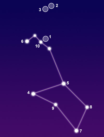 puppis constellation www pixshark com images galleries with a bite Canis Major Dog canis minor gramercy park