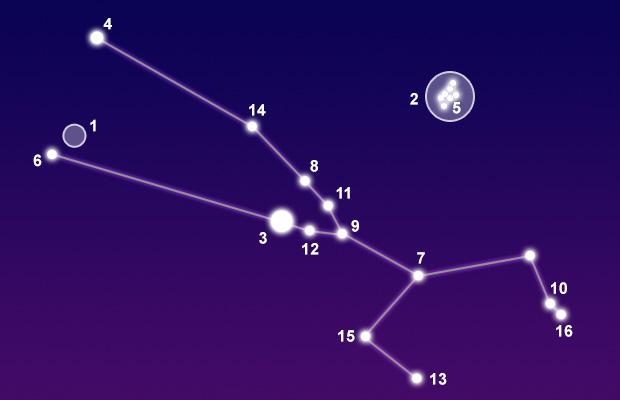 constellations taurus nebula - photo #37