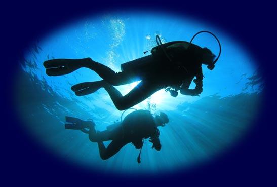 Famous Scuba Divers Scuba Divers in The Ocean Quot